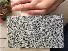 Royal Grey Granite, Ancient Grey Granite Slabs