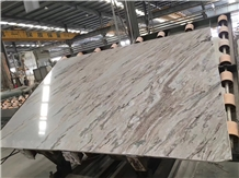 Polished Italy Palissandro Oniciato Grigio Marble