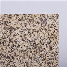 Yellow Kalamaili Granite on Fair for Flooring Tile