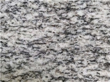 Hot Sell Grey Granite Tile