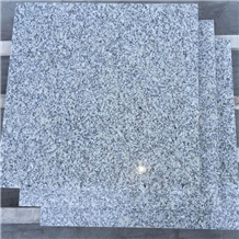 Chinese Cheap Granite Grey Sardo G602