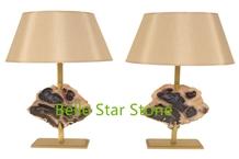 Petrified Wood/Wood Fossil Home Decor Desk Lamps