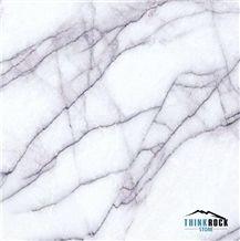 Italy Paradise White Marble Stone Tiles/Slabs