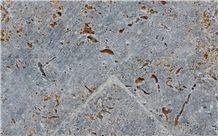 Kirchheimer Muschelkalk Kernstein Cross Cut Tumbled