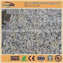 Cheap Price Golden Autumn Yellow Granite Customized Tiles,Flooring