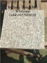 2018 Competitive Price Suoi Lau White Granite Top Surface Flamed