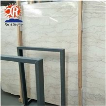 Cheap Natural Iranian Stone Shell Beige Marble