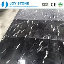 Black Snowflake Granite Factory Directly Sale Polished Slabs