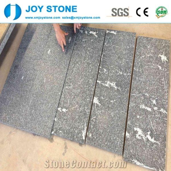High Quality Black Snowflake Granite 60x60 Floor Tile Price From