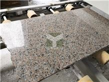 Pink Salmon Granite Slabs & Tiles, China Pink Granite
