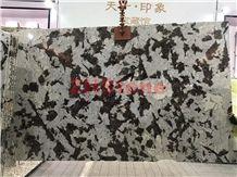 Bianco Everest Granite Everest White Granite Slabs for Background