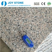 Whole Sale Polished Pink Salmon Porrino Granite Floor Wall Tiles Slabs
