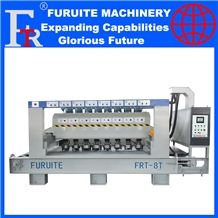 Frt-8t Litchi Surface Automatic Polishing Machine