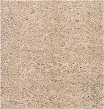 Amarillo Fossil Sandstone Tiles, Arenisca Fossil