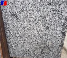 Diadema Granite,G037,G067,G070,G 192,G418,G423,Langhua Bai Tile