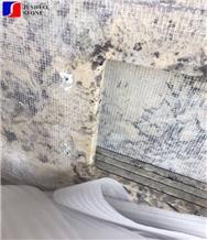 Mesh Back Exotic Brazillian Elegant Snowflake Alaska White Granite Top
