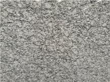 Xinyi Spindrift Diadema China Granite Slabs Grey Spray White Granite