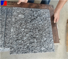 Zijiang White Granite,Zijiang Spray,Zijiang Sea Flower Floor/Wall Tile