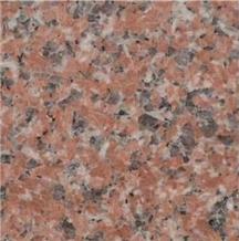 China Cenxi G562 Red Granite Tiles