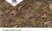 Tempest Quartzite Slabs