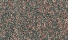 Bala Flower Granite, Desert Bloom Granite Tiles & Slabs