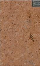 Fossil Gold Limestone Tiles