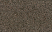 Z Brown Granite,Jalore Brown Granite