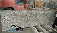 Guatantee Quality Swan White Grey Granite