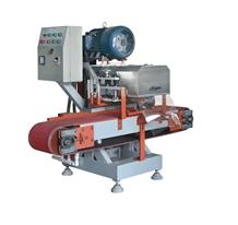 Tjpgp-300 Auto Mosaic Cutting Small Block Machine