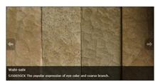 Wabi-Sabi Sandstone Tiles