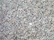 G383 Pearl Flower Granite Polishing Tiles Slabs