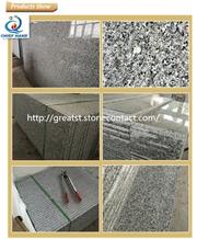 Swan White Granite Polished Stairs/Steps