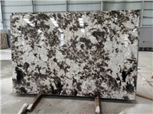 China New Extravagant Stone Alps Big Granite Slab