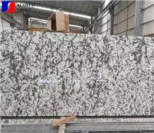 Brazil White Granite Flower Tile Slab for Top Use