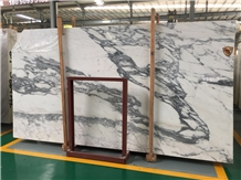 Honed Statuary Venato White Marble Slab