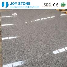 Cheap Polished North G603 Granite Slabs Wall Tiles