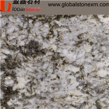 Bianco Antico Yellow Granite Tiles