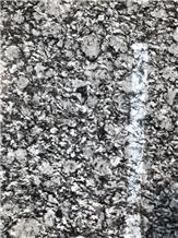 Oyster White,China Granite Slabs/Tiles