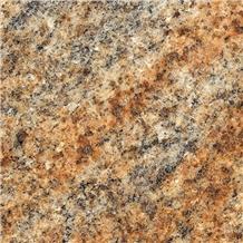 Kashmir Gold Granite Wall Tiles
