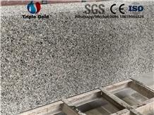 G436 Swan Red Dallas Goose Granite Wall Skirting