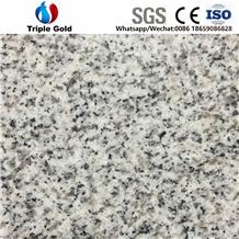 G603 Light Grey Granite Bianco Crystal Floor Tiles