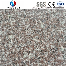 G664 Peach Pink Red Granite Floor Tile Slabs