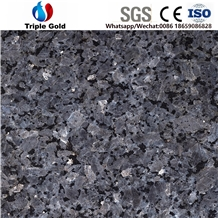 Silver Pearl Blue Star Granite Floor Slabs Tiles