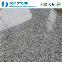 Polished G602 Bianco Sardo Grey Granite Slabs Tile