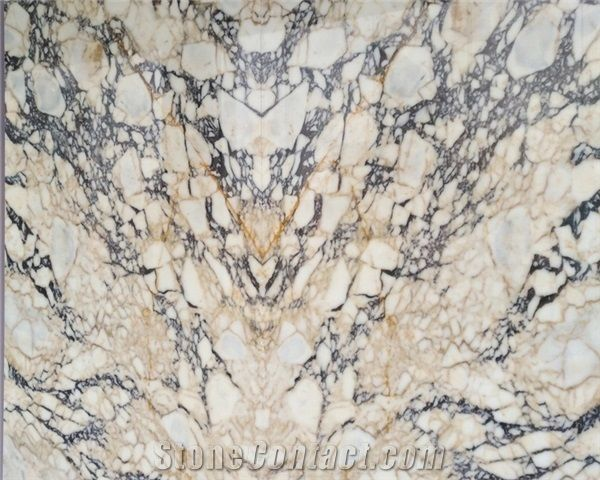 Black And Gold Veins Polished White Marble From China Stonecontact Com
