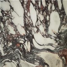 New Product Italian Calacatta Violet Marble