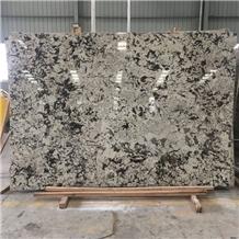 Snow Mountain Silver Fox Granite Slabs