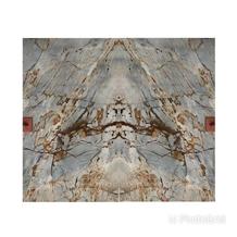 Espinella Gold Quartzite Book Match Slabs