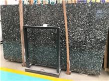 Whosale Black Fossil Marble Slab Tile Price