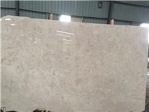Shelly Beige Marble Fossil Cream Limestone Slab